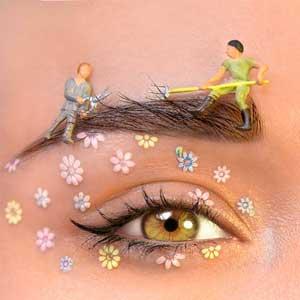 Eyelashes Eyebrow serivces